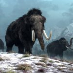 Scientists launch plan to revive extinct woolly mammoths in the Arctic